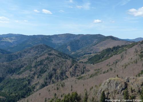 Panorama sur la vallée de la Doller depuis le belvédère des Fuchsfelsen