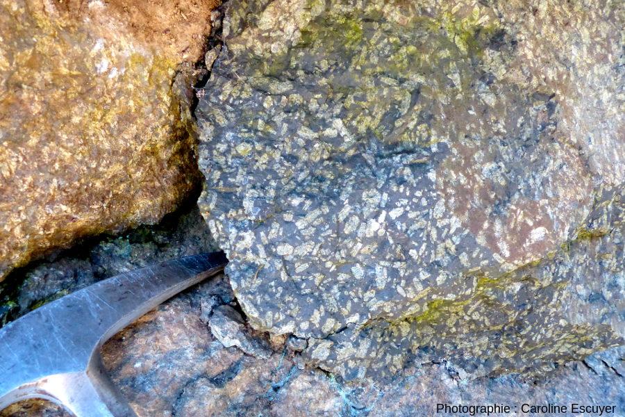 Roche observée sur les blocs au pied du Rocher du Corbeau