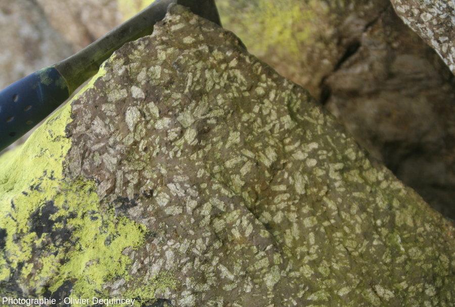 «Porphyre vert antique» du Rocher du Corbeau