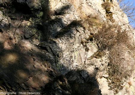 Prismes réguliers au contact d'une zone plus massive
