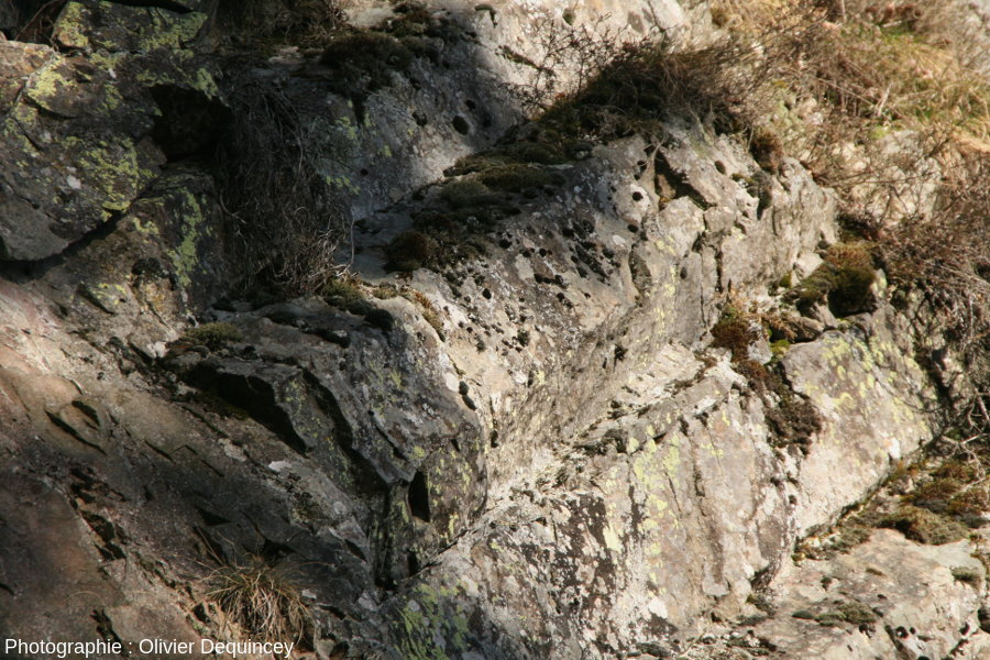 Contact prismes / roche massive, coulée du Rossberggesick