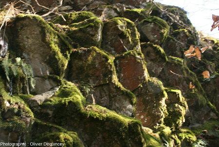 Colonnes empilées au sommet de la coulée du Rossberggesick