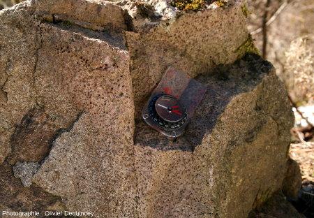 Bloc de roche volcanique à faciès vésiculé, massif du Rossberg