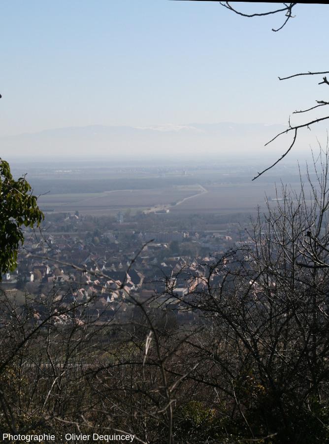 Vue sur le fossé rhénan et la ligne de crête de la Forêt Noire depuis la carrière du Strangenberg