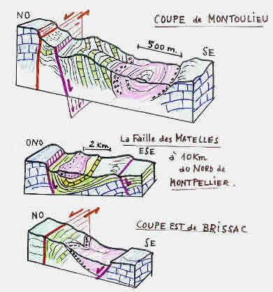 """Études microtectoniques sur le """"pitch"""" des stries."""