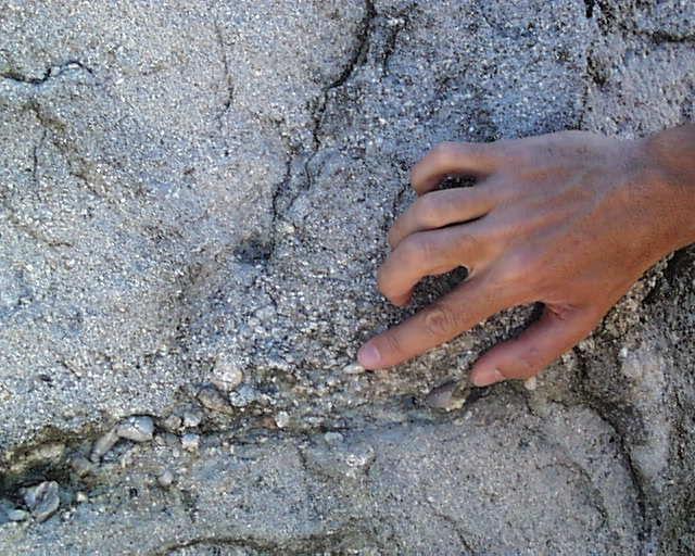 lits à grains grossiers et à grains fins (Gros plan)
