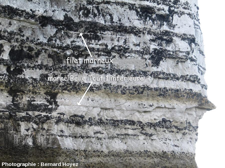 La marne Vaudieu [= Belle Tout inférieure?] au cap du Trou de la Mine