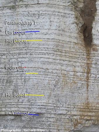 Partie médiane de la falaise – monticule de la Haye Ouest