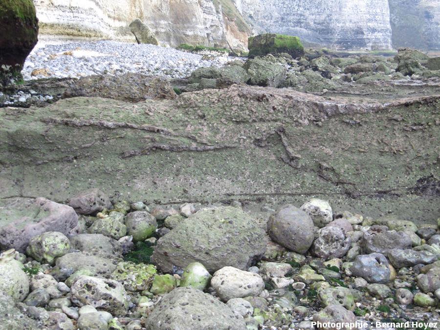 Silex tordus à l'intérieur de la couche slumpée (Trou de La Mine)