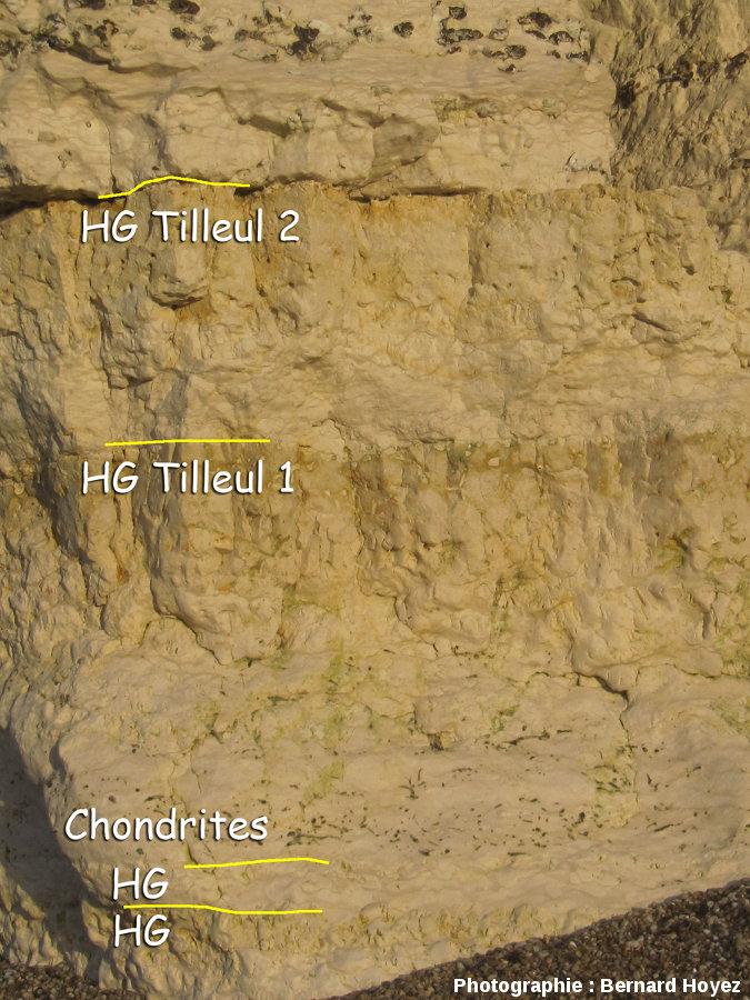 Niveau à Chondrites et hardgrounds Tilleul 1 & 2