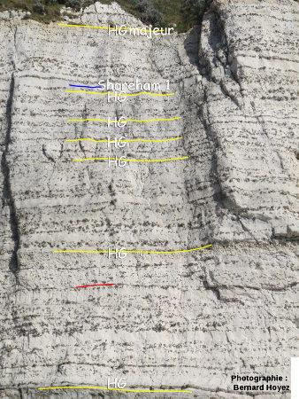 Coniacien inférieur, falaise d'Amont