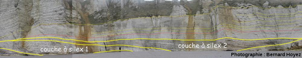 Les couches de craie à silex, falaise d'Amont