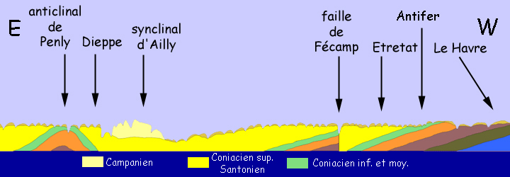 Vue de face des falaises du Pays de Caux (échelle des hauteurs très exagérée)