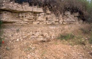 Bancs calcaires à ondulations