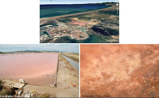 Les marais salants de Gruissan (Aude) et leur couleur rose caractéristique à certaines saisons
