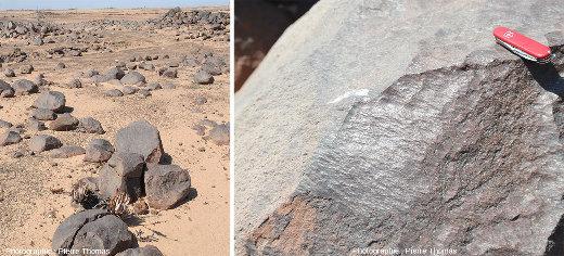 Blocs de dolérite recouverts par la patine du désert (biofilms) dans le désert de Namibie