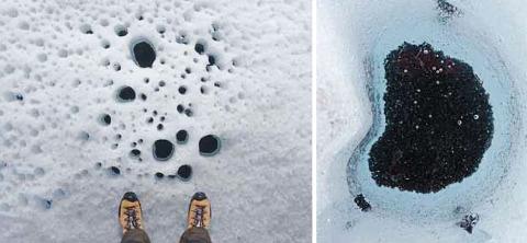 Trous à cryoconite, mélange sombre de particules minérales (dont des cendres volcaniques) et d'organismes unicellulaires (dont des cyanobactéries photosynthétiques) à la surface d'un glacier au Groenland