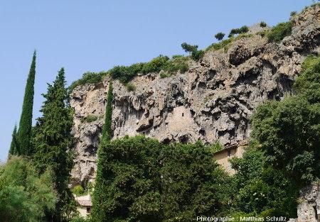 """Falaise de travertin du """"rocher"""" de Cotignac (Haut-Var)"""