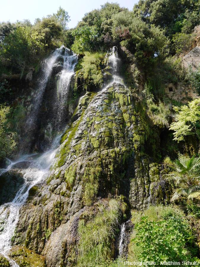 Vue rapprochée de la cascade de tuf de Villecroze (Haut-Var)