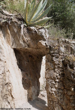 Restes d'habitat troglodytique de Villecroze (Haut-Var)