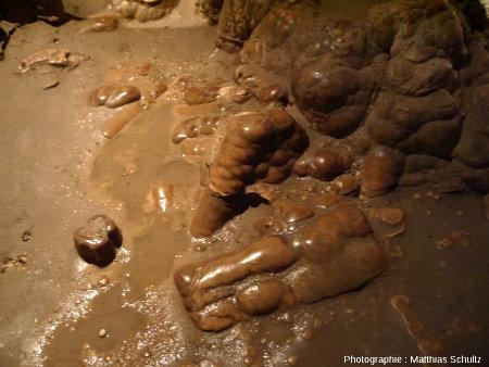 Détail de concrétions dans la salle des colonnes du chateau-grotte de Villecroze