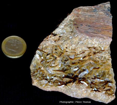 Échantillon de sidérite avec cristaux automorphes, région de Vizille