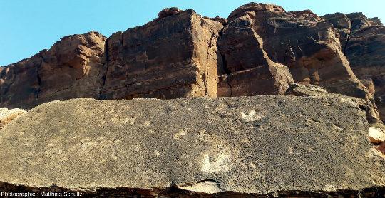 Observation in situ de la surface de la moitié inférieure du bloc éboulé de grès clair Navajo