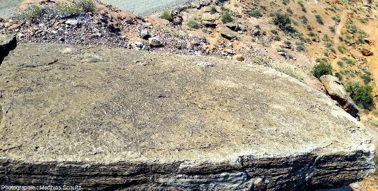 Observation in situ de la surface de la moitié supérieure du bloc éboulé de grès clair Navajo (vue en plongée)