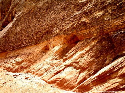 Détail des stratifications éoliennes entrecroisées des grès Navajo au niveau d'une paroi verticale du canyon de Capitol Gorge, dans le Parc national de Capitol Reef, Utah
