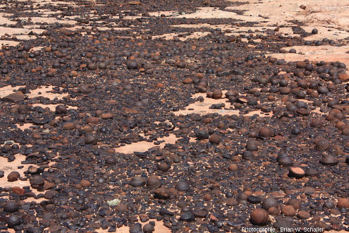 Amoncèlement de billes moqui de tailles et formes variables laissées par l'érosion à la surface des grès Navajo, dans le Grand Staircase-Escalante National Monument, Utah