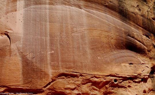 Patine du désert à la surface des grès Navajo de Capitol Gorge, Parc national de Capitol Reef, Utah