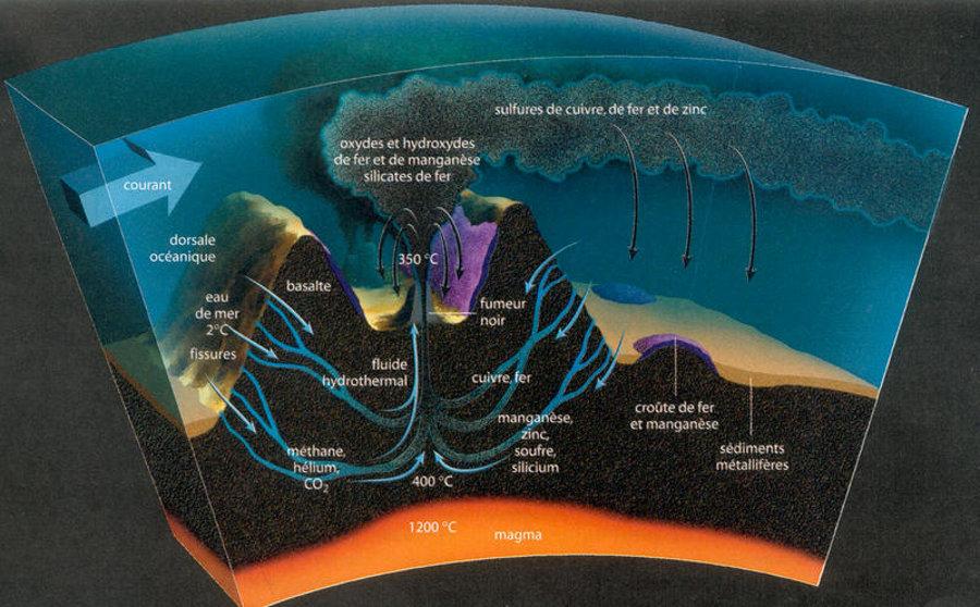 Schéma simplifié et idéal montrant l'interaction entre la roche et l'eau au niveau d'une dorsale