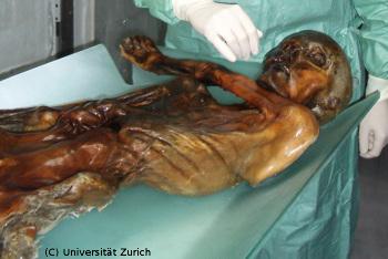 Ötzi: conservé dans un glacier alpin