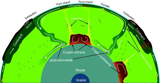 Structure et dynamique du manteau profond en relation avec la tectonique des plaques et les points chauds
