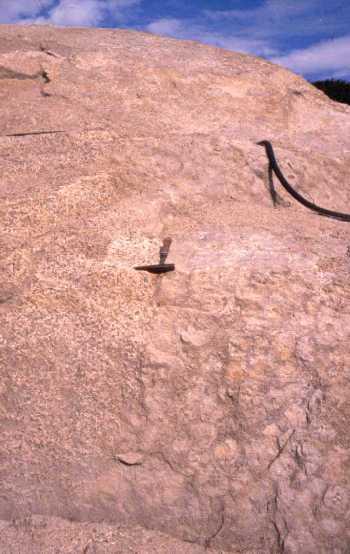 Détail de la bordure gauche du filon