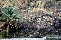 Moho pétrologique entre gabbros et péridotites (dunites)