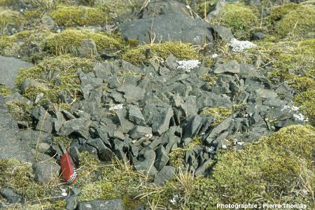 Galet islandais fracturé par cryoclastie