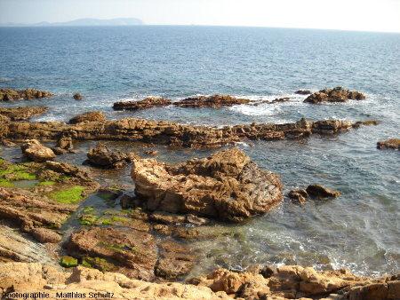 Les grès rouges du sillon Permien au niveau de Carqueiranne, entre Toulon et Hyères