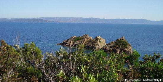 Les schistes de l'ile de Port-Cros