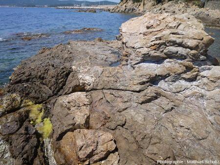 Contact entre amphibolites et gneiss au niveau du chemin côtier entre la plage Saint Clair et le port du Lavandou