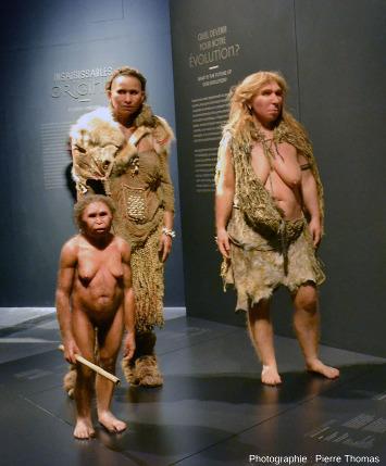 Le départ du parcours de l'exposition Origines, les récits du monde
