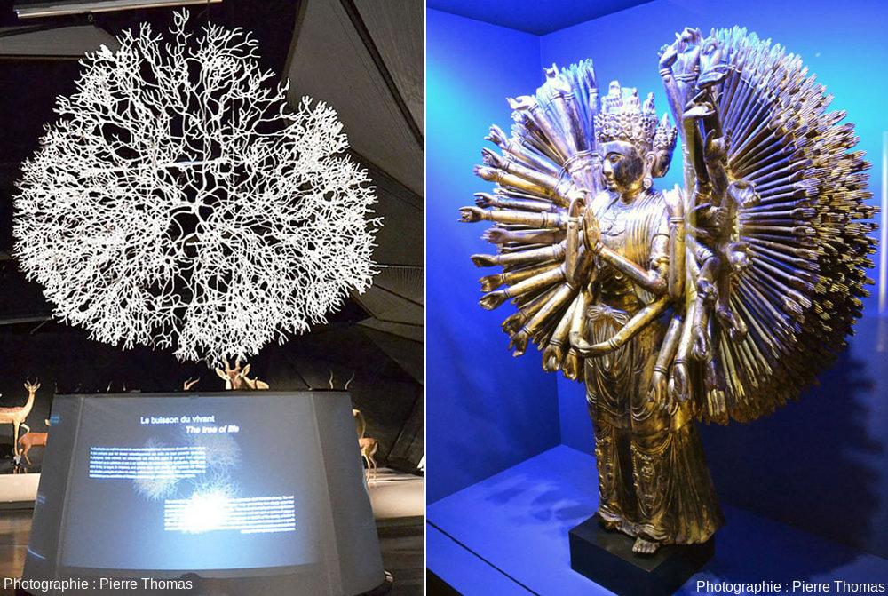 Le buisson du vivant mis en vis-à-vis d'un Bodhisattva Avalokitesvara à mille bras vietnamien