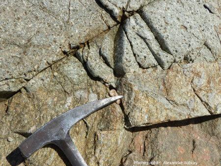 Détail du contact entre les gneiss de Port-Béni et la microgranodiorite de Pleubian