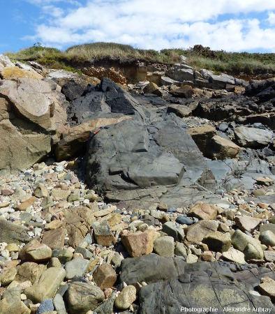 Filon de dolérite recoupant l'ensemble de l'affleurement de Port-Béni (Côtes d'Armor)