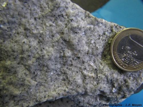 Échantillon macroscopique de granite de type «ACG collisionnel», à biotite abondante et rare amphibole (Inde du Sud)