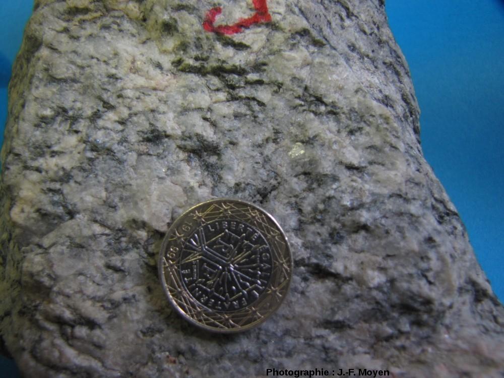 Échantillon de TTG (ici une trondhjémite) de l'Archéen (Barberton, Afrique du Sud), pétrologiquement similaire aux granites ATG modernes