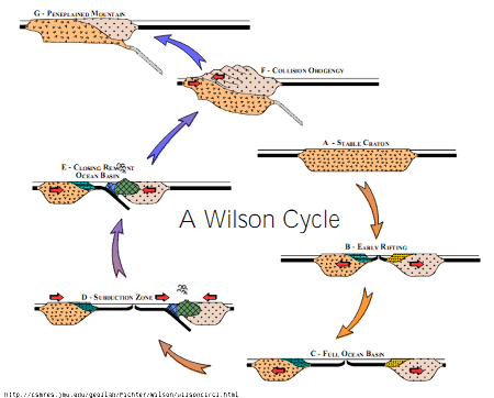Cycle de Wilson