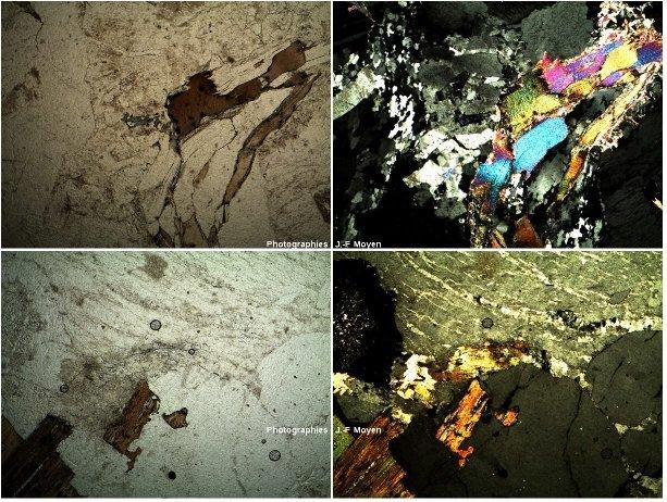 Granites peralumienux de zones de collision, microscope polarisant
