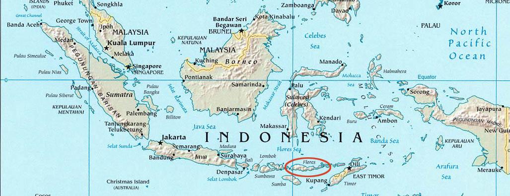 Carte de l'Indonésie et localisation de l'île de Flores dans l'archipel volcanique des îles de la Sonde