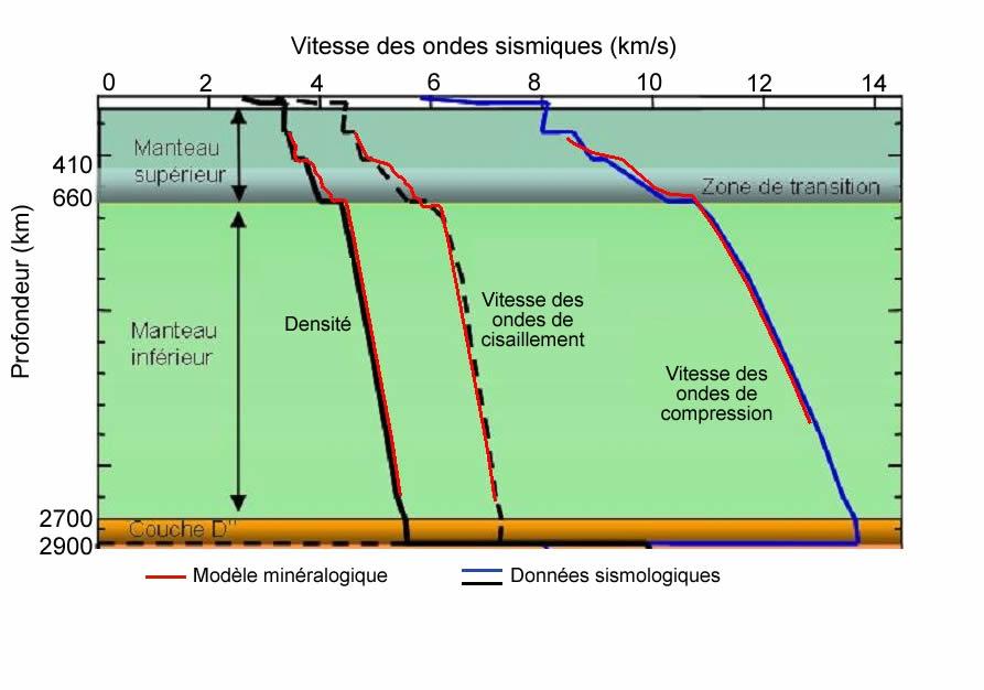 Variations des vitesses des ondes sismiques et de la densité du manteau en fonction de la profondeur, obtenues à partir du modèle minéralogique et à partir des données sismologiques